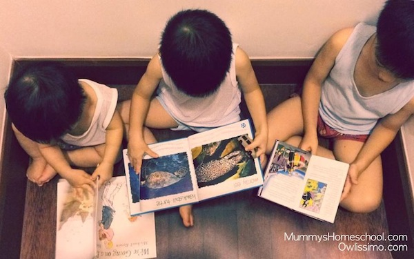 Vee Jae El reading