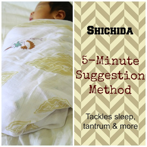 Shichida 5-Minute Suggestion Method