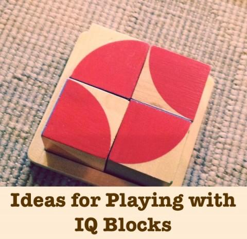 Shichida IQ Genius Build Play Smart Blocks