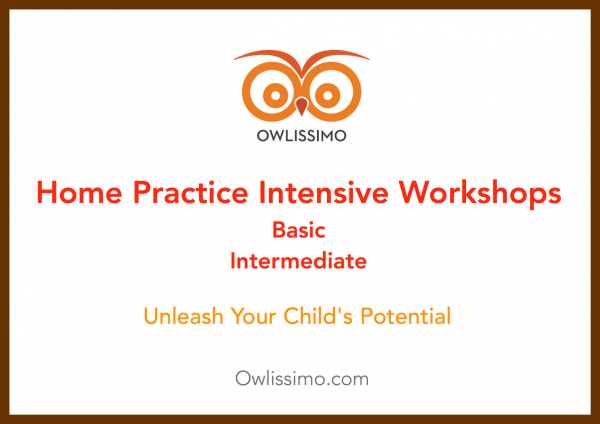 home practice intensive workshops