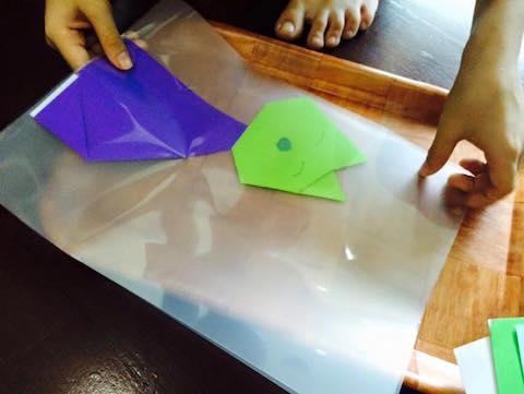 origami cats laminate