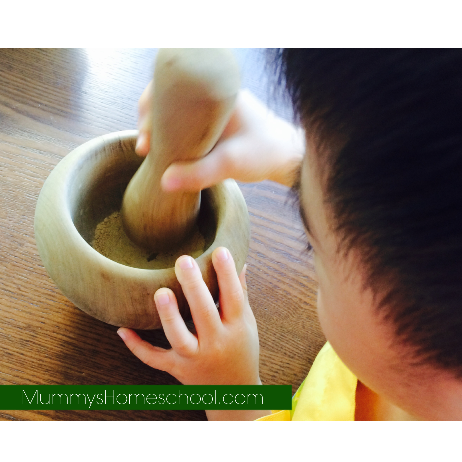 montessori pestle & mortar