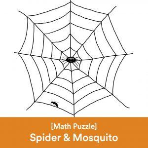 Math Spider Mosquito Problem Square Cover